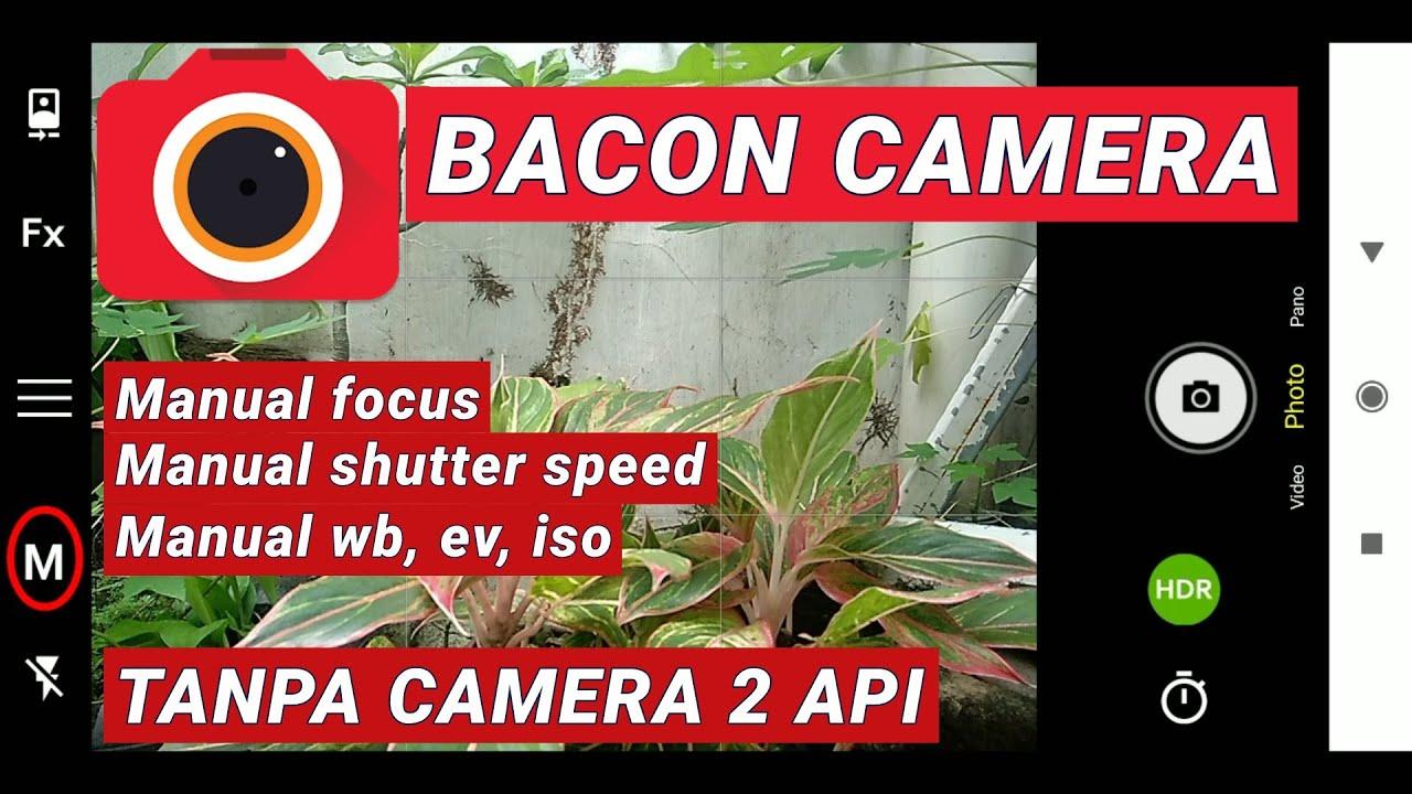 Bacon-Camera
